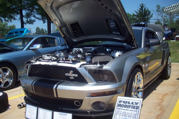 All Ford Show 076