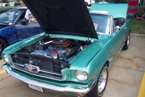 Mustang Show 019