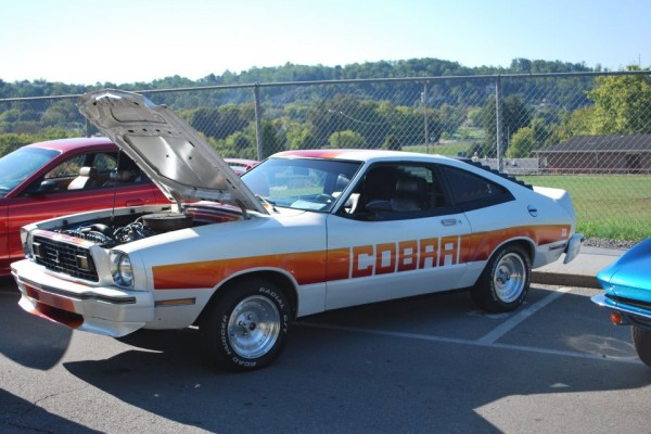 1978 Ford Mustang Cobra Shawn T