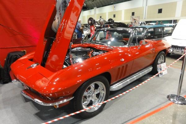 Corvette (8)