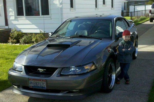 Horsey Car