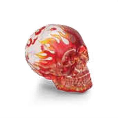Translucent Skull Shift Knob
