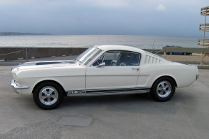 Shelbygt350.MustangsDaily