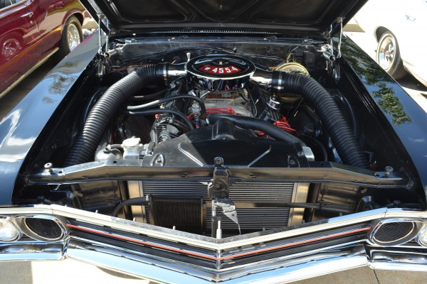 1966 Buick Skylark (2)