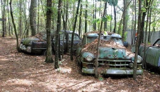 Go Automotive Ghost Hunting in the World's Largest Classic Car Graveyard