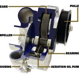 ProCharger 101: Inside a ProCharger Centrifugal Supercharger