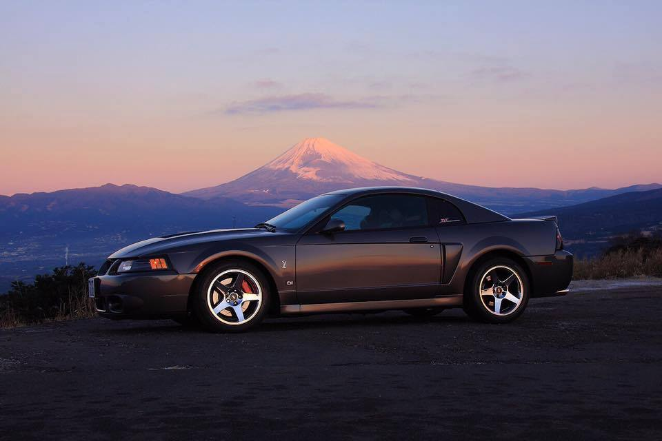 2003 Ford SVT Cobra
