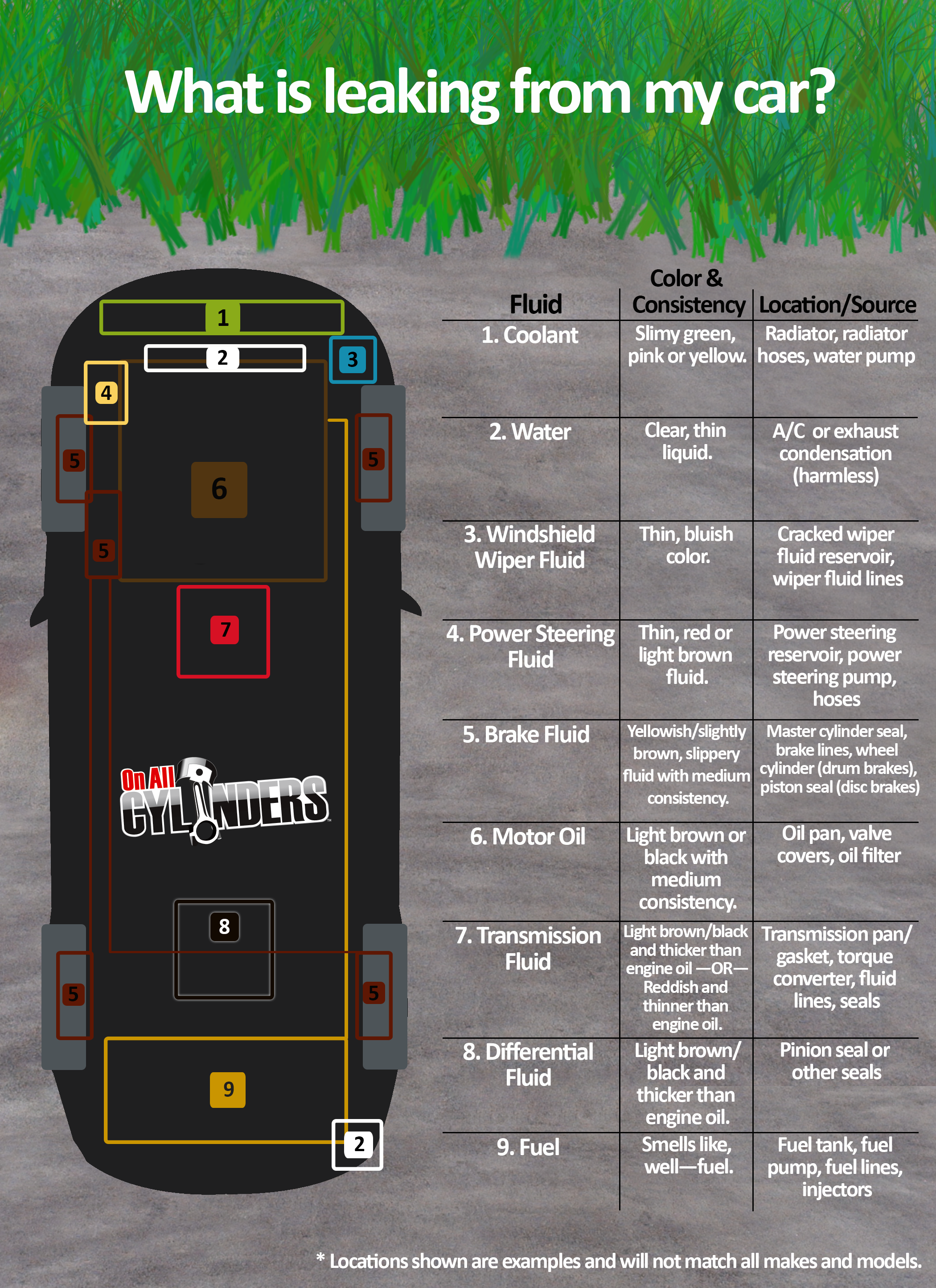 How To Change The Oil In Your Car >> Infographic: A Quick Guide to Identifying the Source of Fluid Leaks - OnAllCylinders