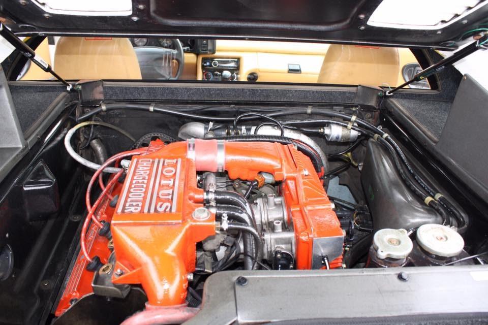 1994 Lotus Esprit S4 Engine Bay