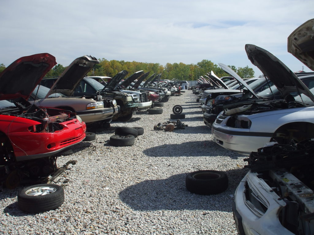 Cars Lined Up in a Junkyard