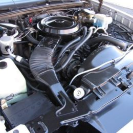 85 monte carlo 305 engine bay