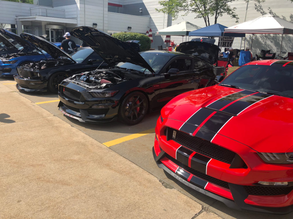 Row-of-Ford-Mustangs-at-Car-Show