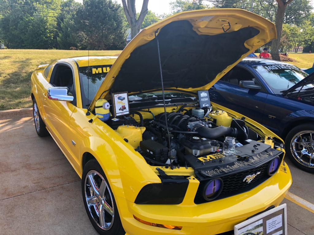 Yellow-Mustang