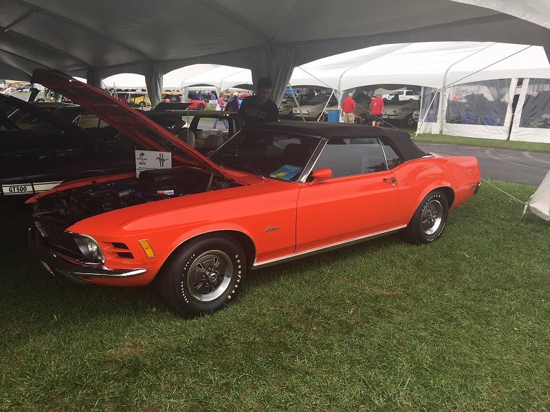 orange shelby ford mustang convertible classic