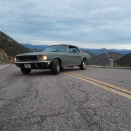 Photo Gallery: Readers' Ford Mustangs