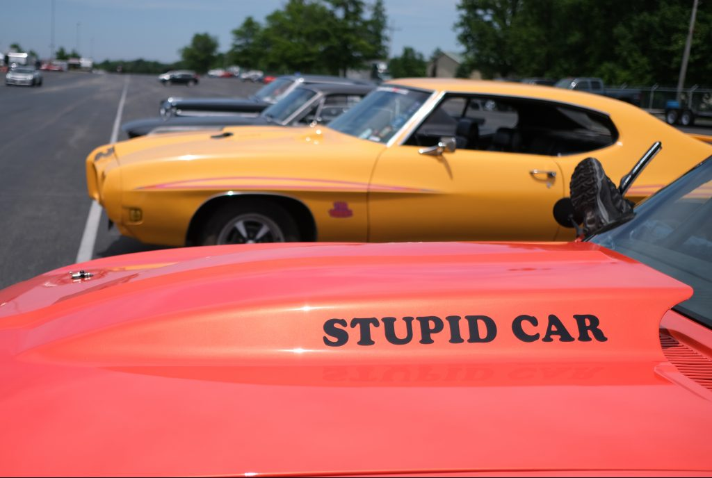 Stupid Car Decal